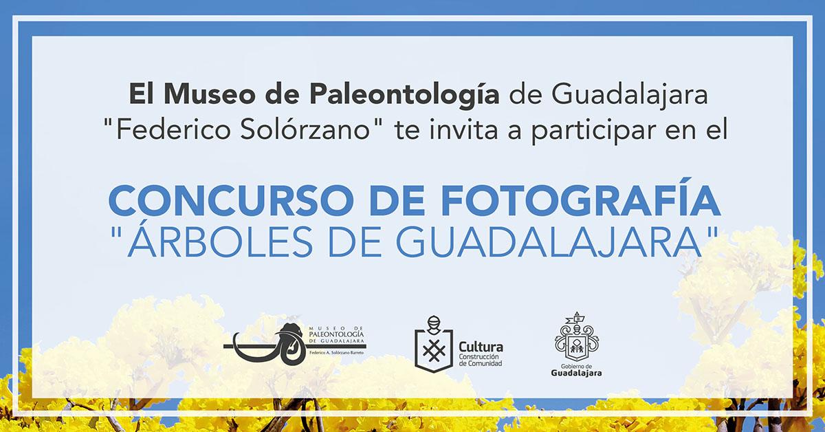 """CONCURSO DE FOTOGRAFÍA """"ÁRBOLES DE GUADALAJARA"""""""