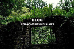 Concursos de Fotografía México BLOG