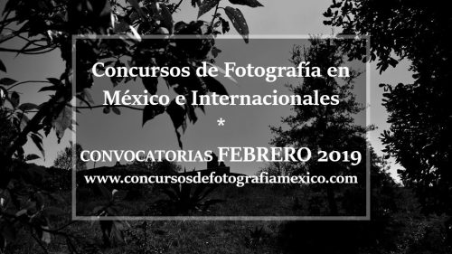 Concursos de fotografía Febrero 2019