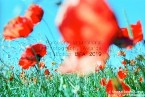 Barcelona International Photography Awards 2019