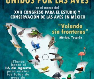 Concurso de fotografía «Unidos por las Aves»