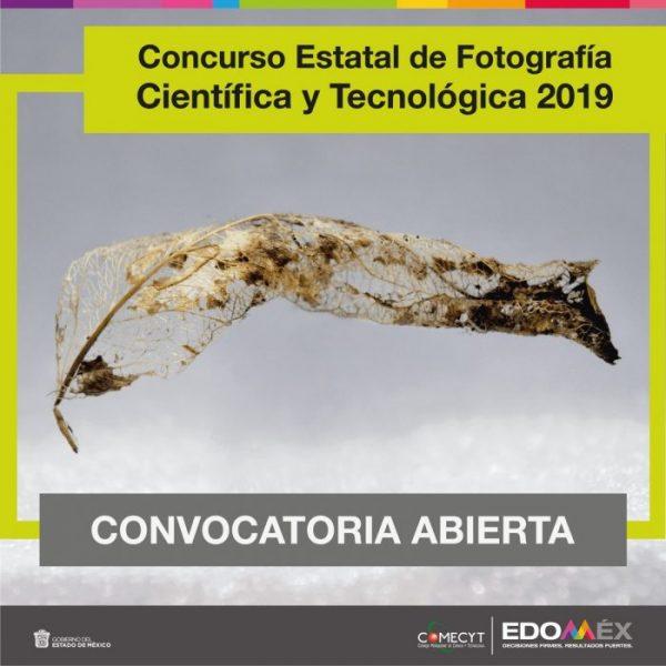 Concurso Estatal de Fotografía Científica y Tecnológica 2019
