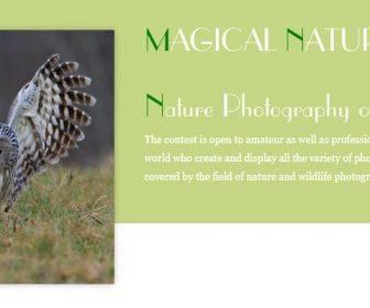 Concurso Internacional de Fotografía de Naturaleza «Naturaleza Mágica»