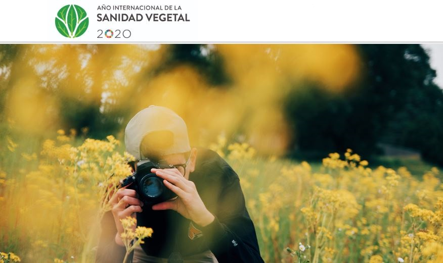 Concurso de Fotografía sobre Plagas y Plantas Sanas