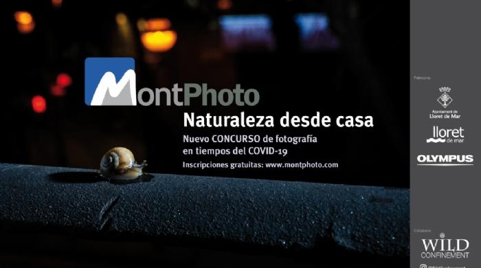 Concurso Internacional de Fotografía de Naturaleza desde Casa - MontPhoto 2020