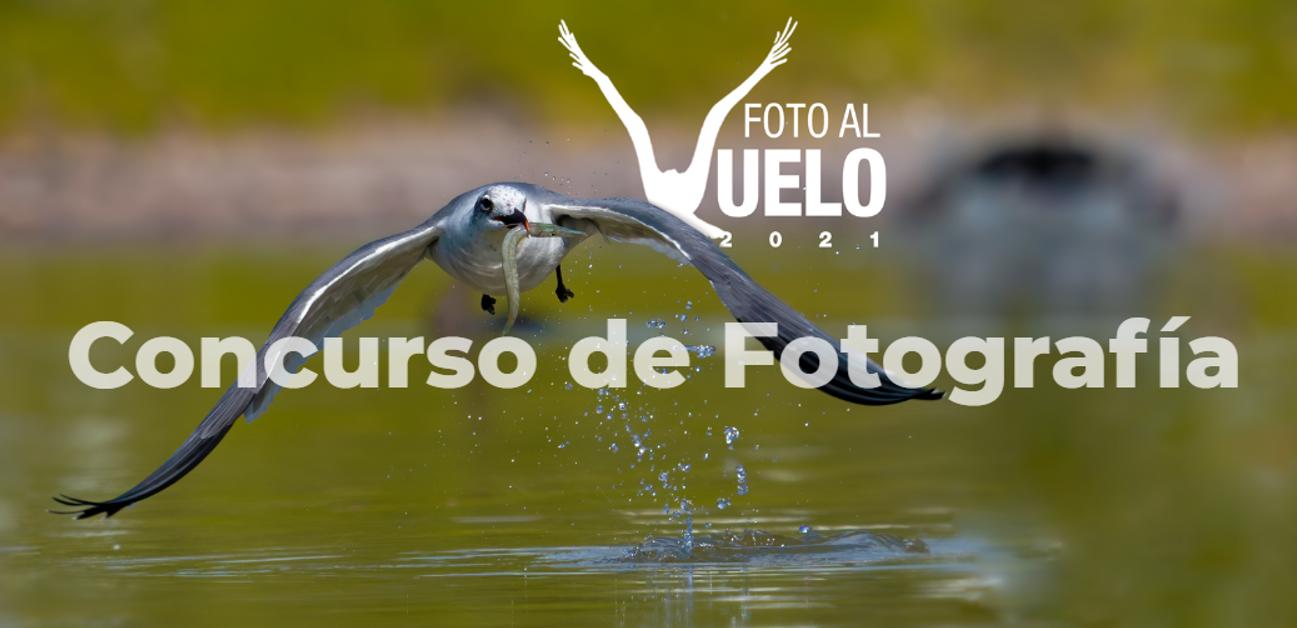 VII Concurso de Fotografía en la Ciénaga de Zapata