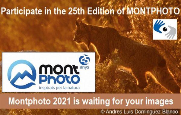 Concurso Internacional de fotografía y video de naturaleza MontPhoto 2021