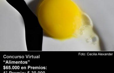 45° Concurso Mensual FotoRevista «Alimentos»