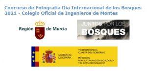 Concurso de fotografía Día Internacional de los Bosques 2021