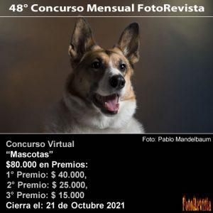 48° Concurso Mensual FotoRevista Mascotas